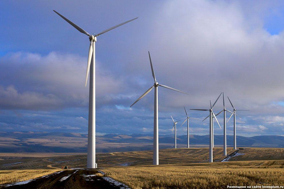 Ветряные турбины в поле